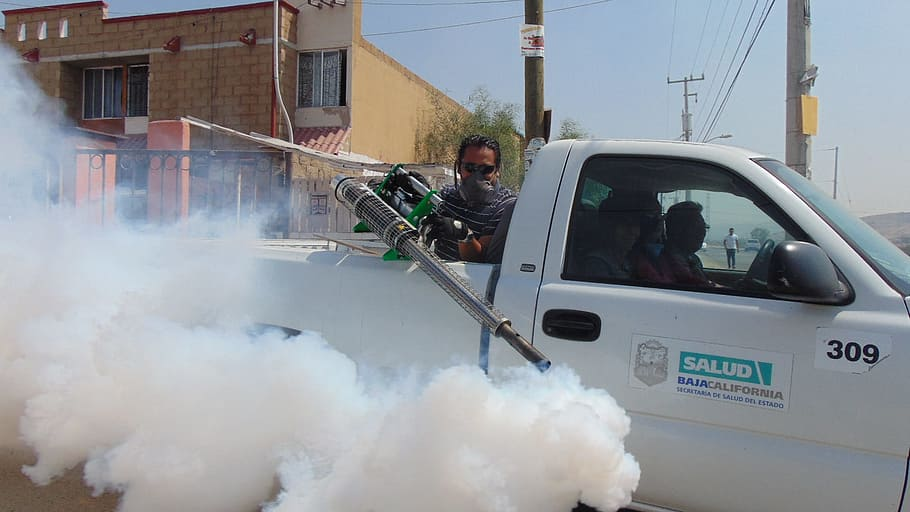 Why do you Need Regular Pest Control Services
